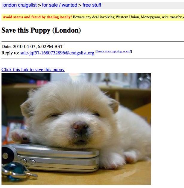 Save Puppy