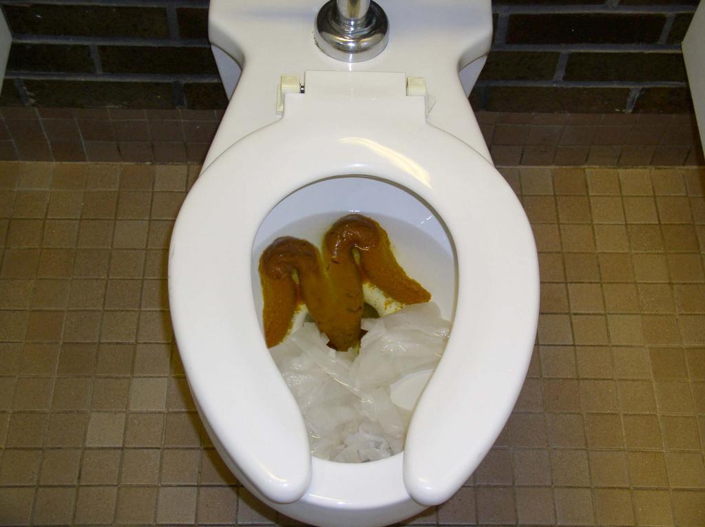 poop craigslist